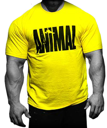 a5d449f5 Buy Animal Iconic T-shirt Yellow Animal Online Price in India.